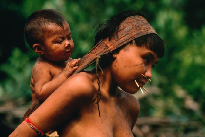 Yanomami ile ilgili görsel sonucu